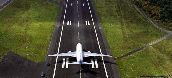 Фото. Пилот самолёта почувствовал, что наехал на препятствие и решил, что это животное