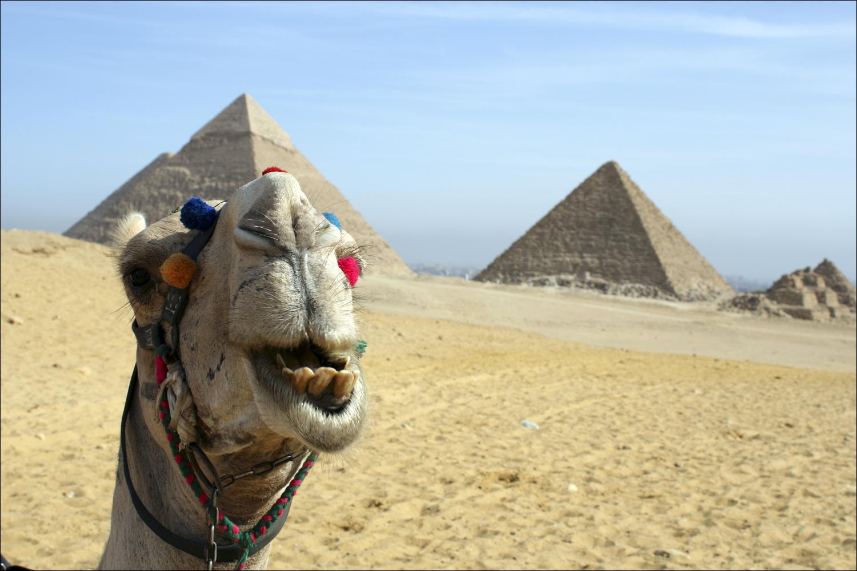 Фото. Египет скоро снова начнёт принимать российских туристов