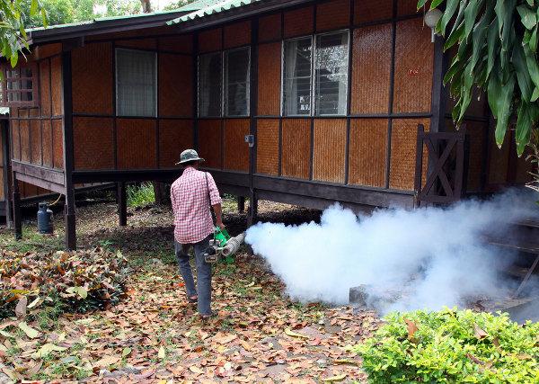 Фото. В Тайланде бушует лихорадка