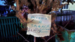 """Рекорды по домашнему """"ёлкостоянию"""" россияне бьют каждый год"""