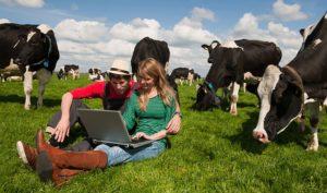 Фото. Новое приложение значительно облегчит жизнь фермеров