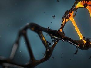 Фото. Из-за нехватки полноценного ночного сна запускается процесс разрушения ДНК, старения и смерти