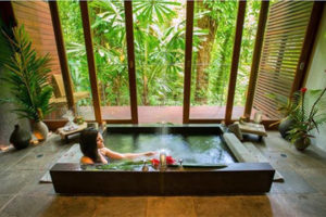 Фото. Лесной отель Silky Oaks Lodge в Австралии был назван самым популярным среди туристов