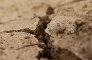 Фото. Землетрясение на Алтае
