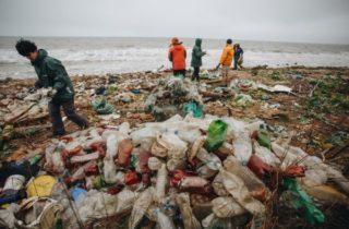 Фото. Сортировка мусора в России