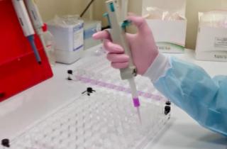Чип на выявление коронавируса