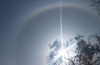 Фото. Солнечное гало в Новокузнецке